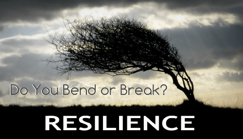 Resilience - Do You Bend or Break.png