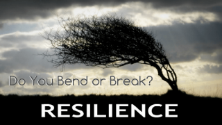Resilience - Do You Bend or Break_0.png