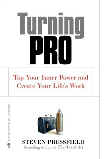 Turning Pro by Stephen Pressfield.jpg